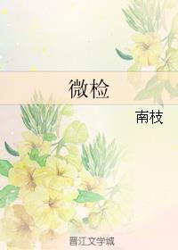 老赵刘春春